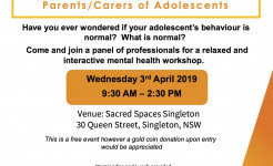 Singleton Youth Workshop Flyer FINAL